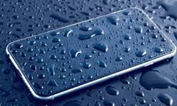 Wet Mobile
